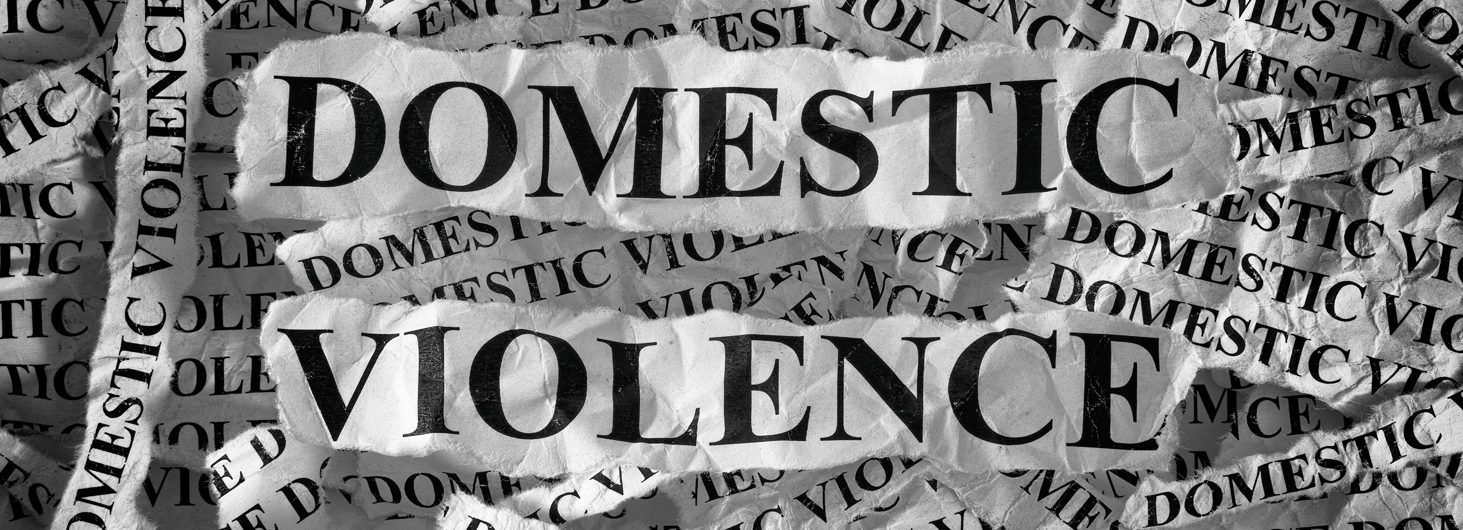 what is domestic violence my sister s place